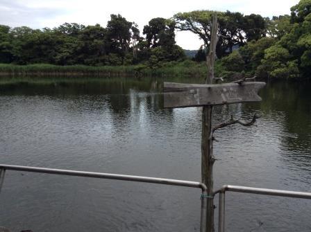伊豆七不思議の一つ、大瀬明神の神池