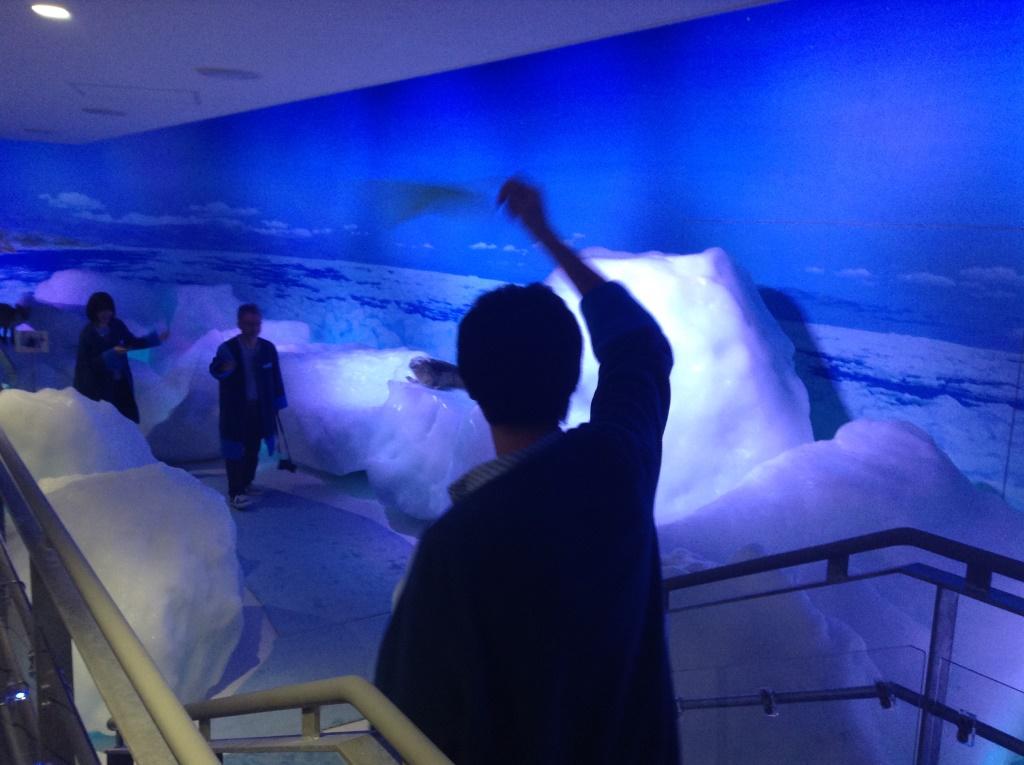 マイナス15℃の空間でタオルをブン回す、オホーツク流氷館