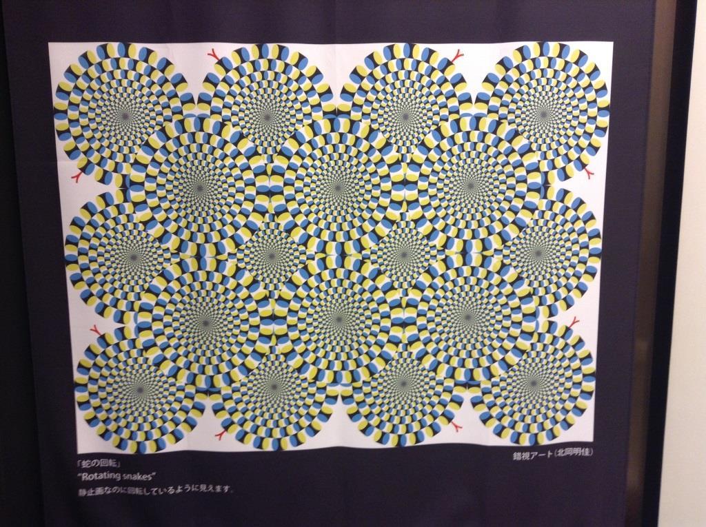 明治大学が運営する不思議空間、錯覚美術館!