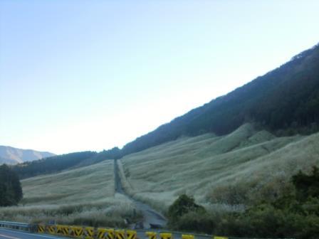 箱根にある幻想空間、仙石原ススキの草原
