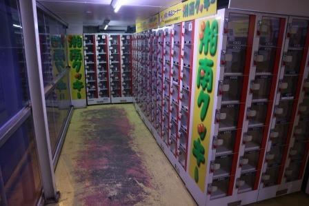 【工場直販】湘南で話題の「湘南クッキー直営店」でクッキーを自販機で買うぜ!