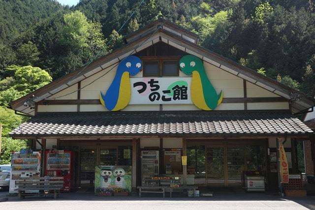 岐阜県にある「つちのこ館」で、未確認生物つちのこに迫る!