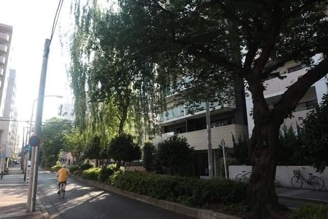 神奈川県真金町に存在していた「永真遊郭跡」を再度再び調査してみた!