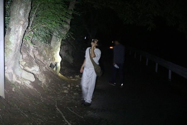 オオクワガタリベンジ!山梨県韮崎市でのクワガタ採集物語〜2017