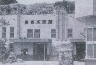 わずか6年で閉館した「鎌倉水族館」とは!?